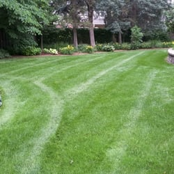 Revive Your Lawn 17 Photos Amp 13 Reviews Landscaping