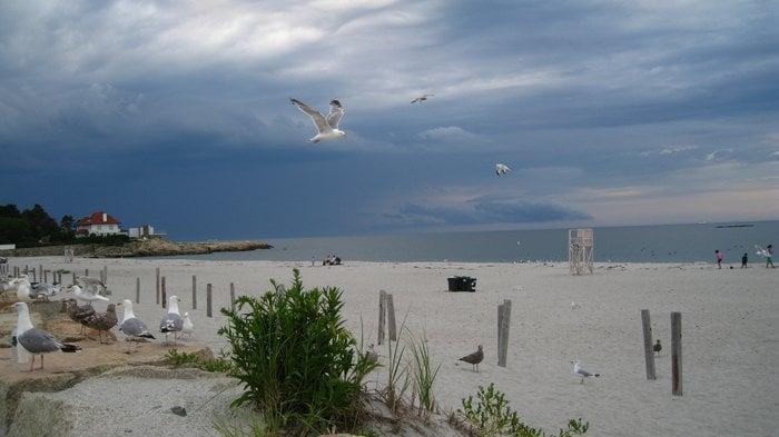 Sandy Beach: 345 Atlantic Ave, Cohasset, MA