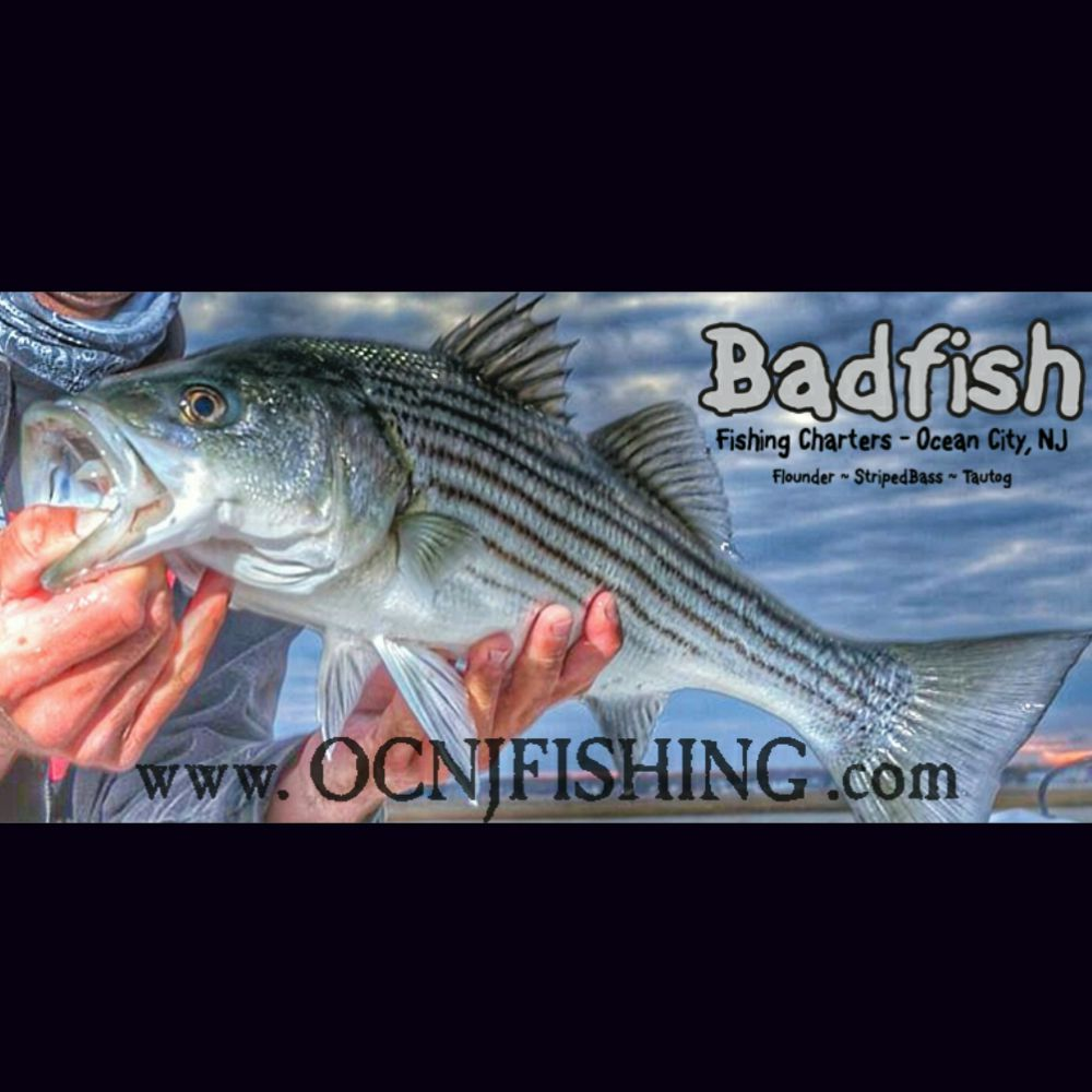 Badfish Fishing Charters