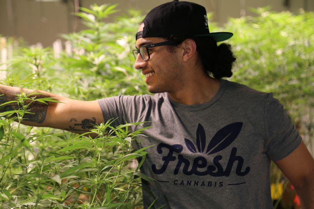Fresh Cannabis Delaware: 800 Ogletown Rd, Newark, DE