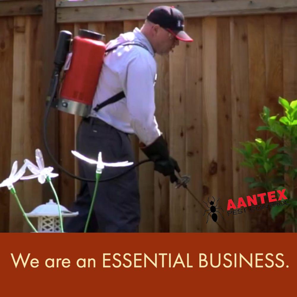 Aantex Pest Control