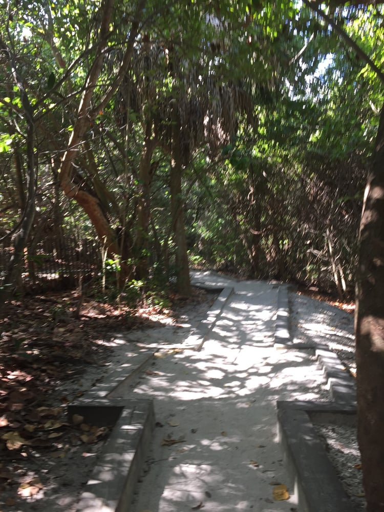 9 Photos For Ocean Ridge Hammock Park