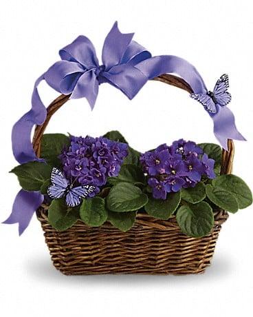 Union Street Flowers & Gifts: 508 E 10th St, Sheridan, IN
