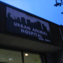 urban animal hospital   24 reviews   vets   1032 davie