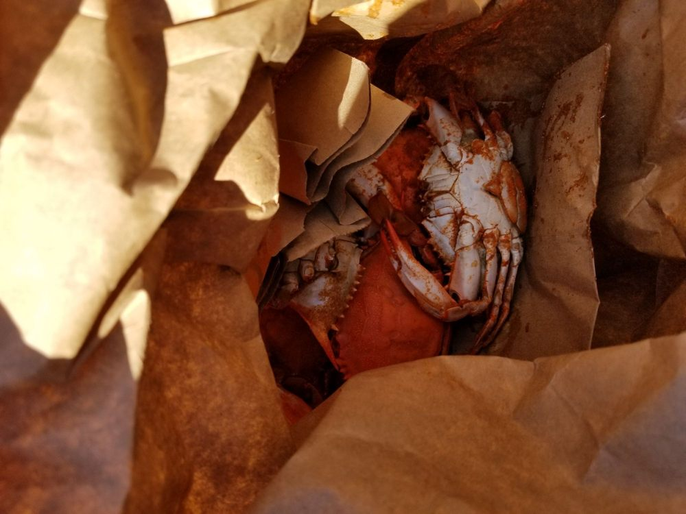 Ms Apples Crab Shack: 580 W Merritt Island Cswy, Merritt Island, FL