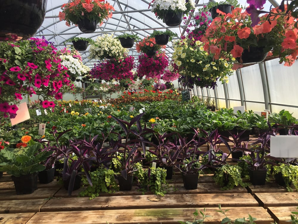 Stivland Gardens: 30085 110th St, Lowry, MN