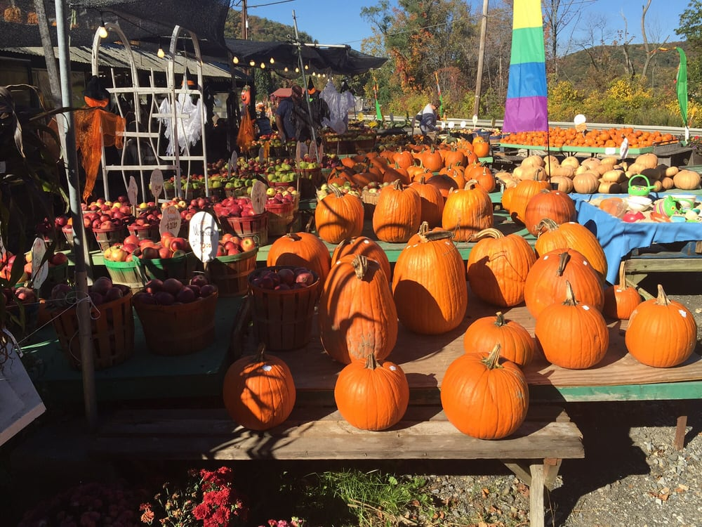 Culver Lake Nursery & Farm Market: 443 US Hwy 206, Branchville, NJ