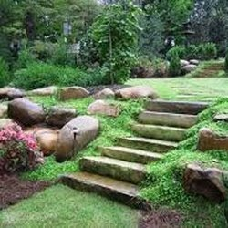 Emerald Green Home Lawn Care Landscaping San Antonio TX