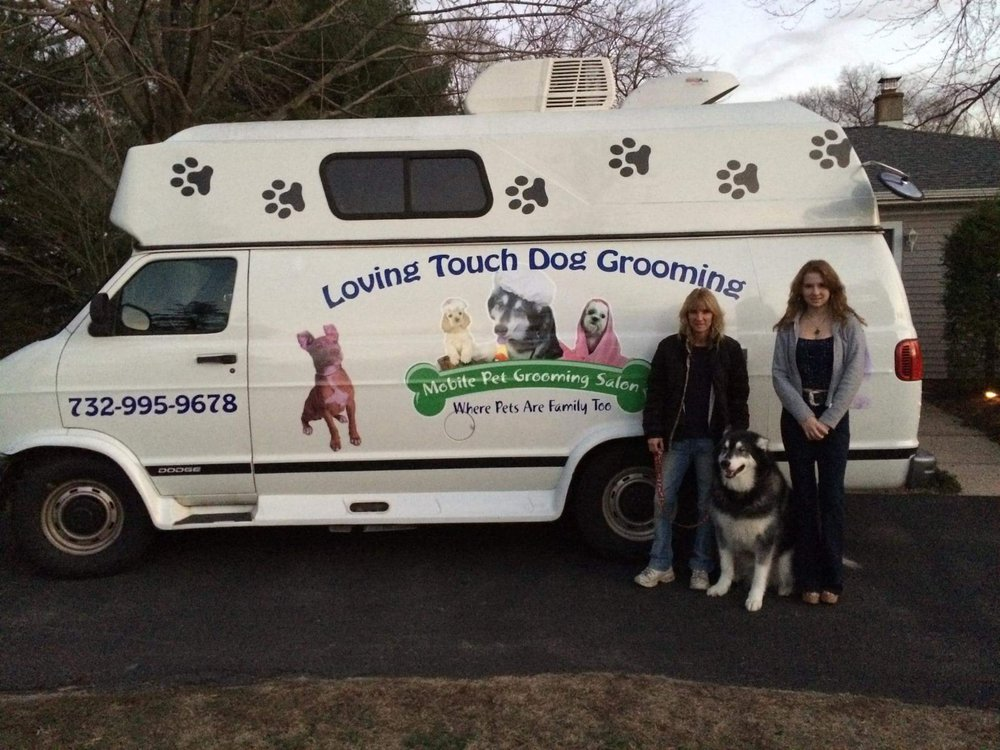 Loving Touch Mobile Dog Grooming: S Hope Chapel Rd, Jackson, NJ