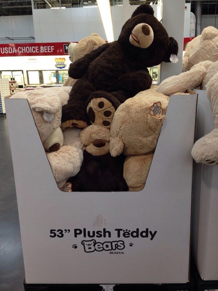 53 inch teddy bear costco