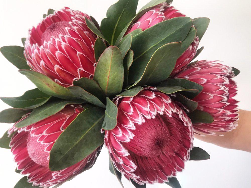 City Line Florist: 2978 Nichols Ave, Trumbull, CT