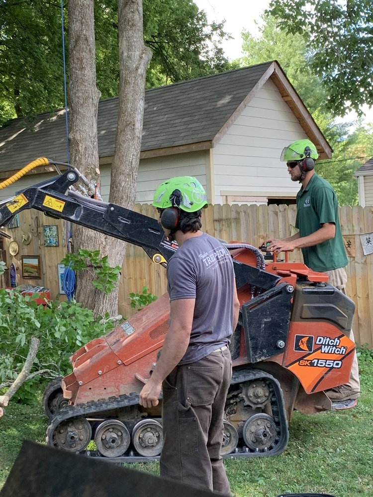 Paden Tree People: 706 Ashland Ter, Chattanooga, TN