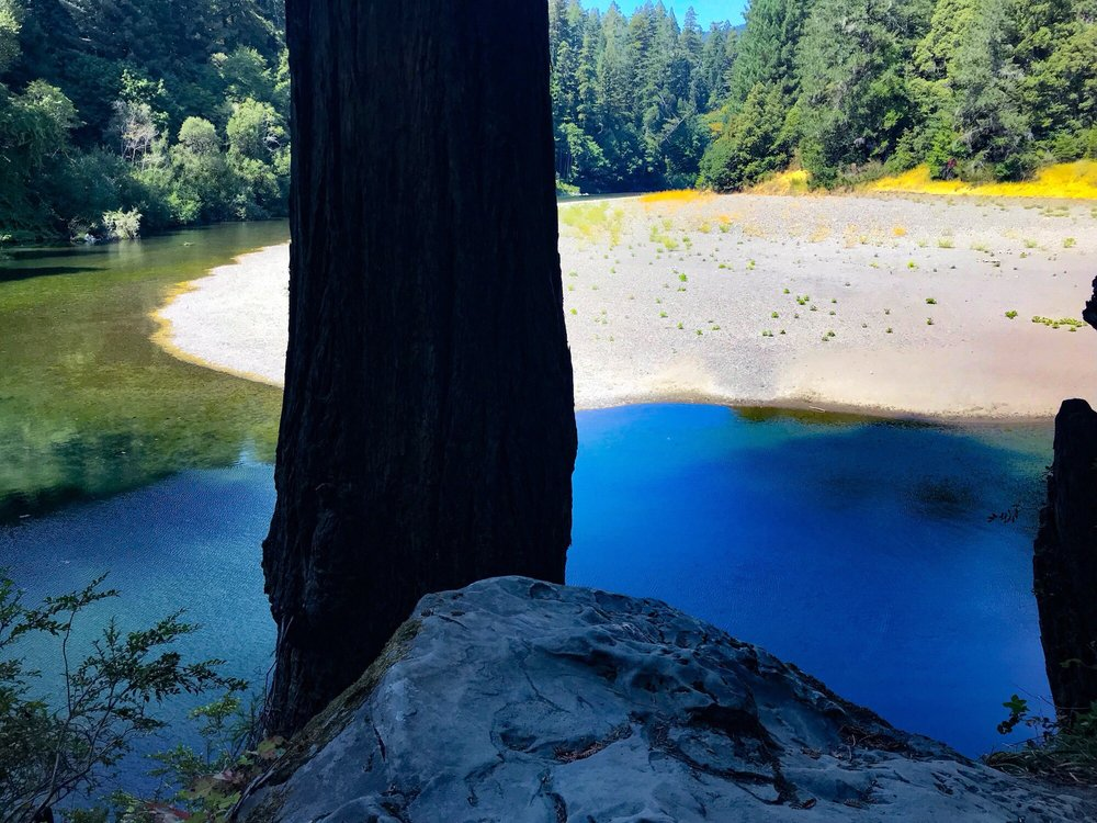 Hidden Springs Campground: Avenue Of The Giants, Garberville, CA