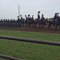 photos for 1st cavalry division horse cavalry detachment stables yelp