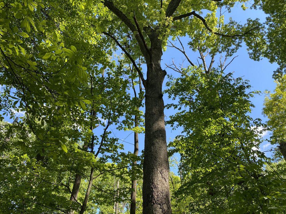 Dora Kelley Nature Park: 5750 Sanger Ave, Alexandria, VA