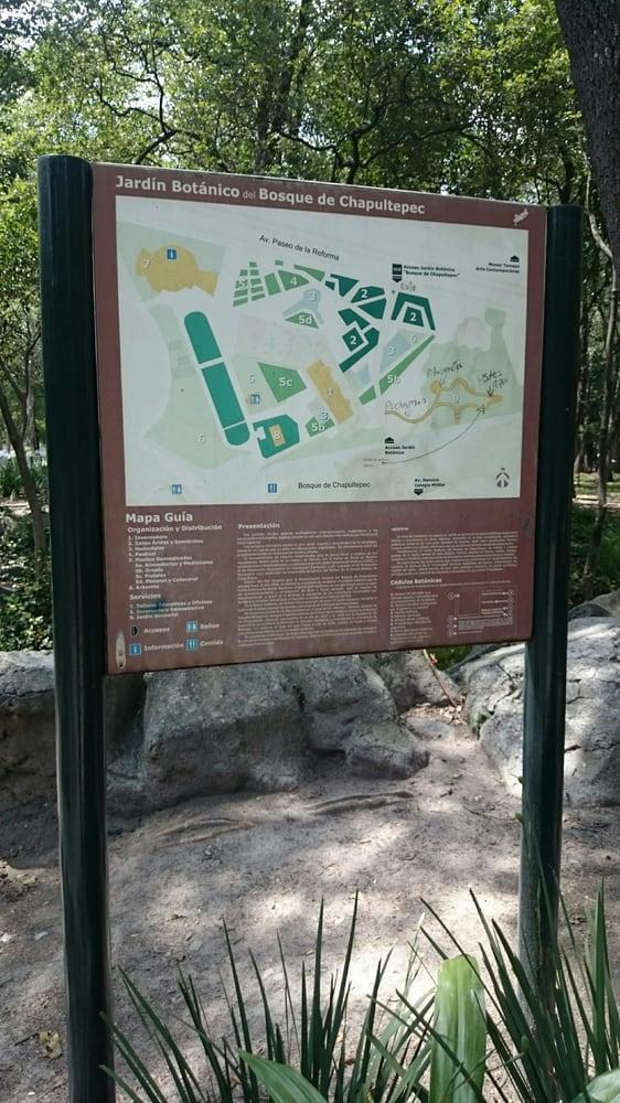 Jard n bot nico chapultepec 55 fotos parques paseo for Jardin botanico numero telefonico