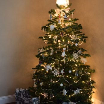 Nice Christmas Trees green valley christmas trees - 15 photos & 48 reviews - christmas