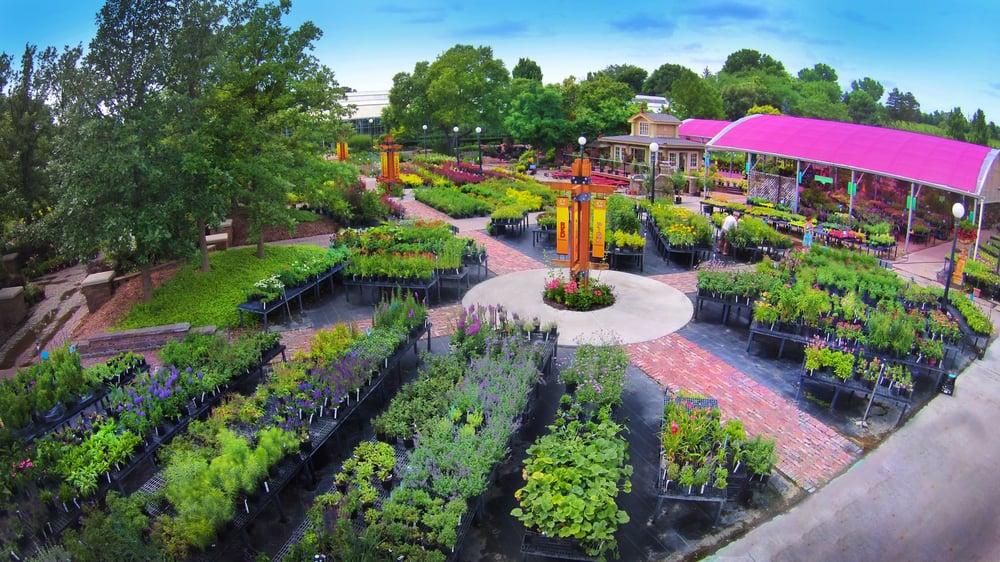 Nursery Sales Area Houses Thousands Of Perennials Shrubs