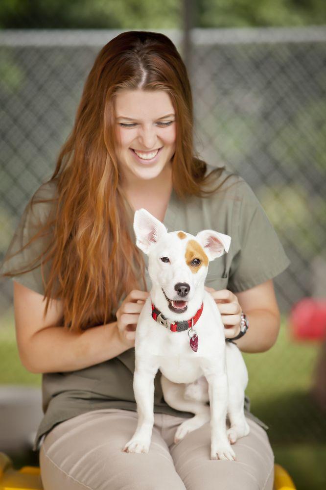 Godspeed Animal Care