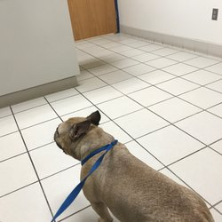 Long Animal Hospital - (New) 32 Photos & 122 Reviews