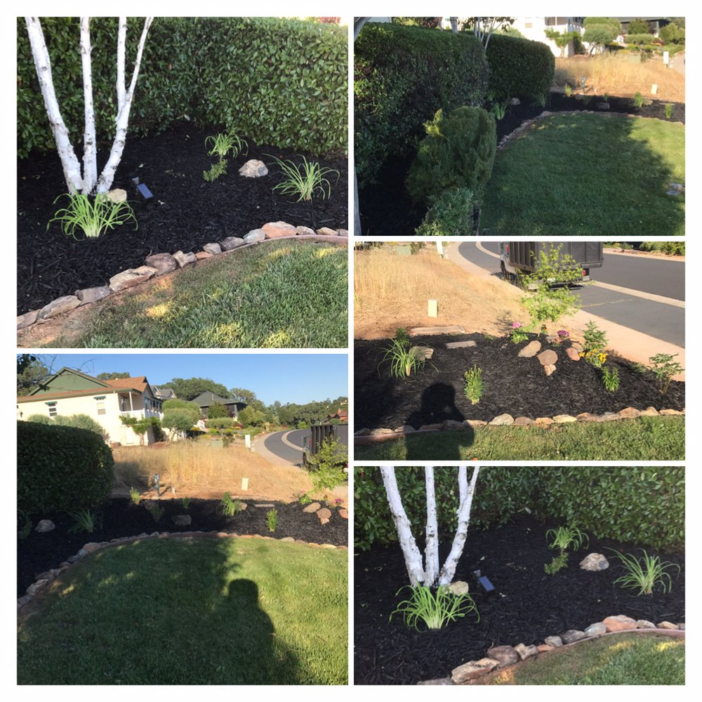 Bloomica Landscaping: 1531 Papoose Dr, Copperopolis, CA