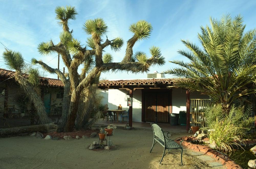 Motels Joshua Tree Ca