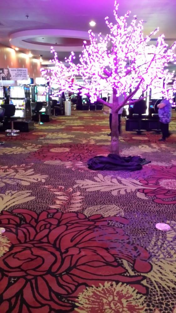 cherry tree casino