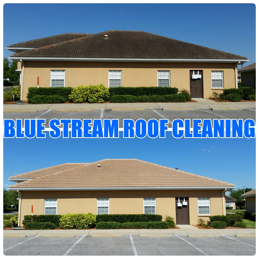 Blue Stream Roof Cleaning & Pressure Washing: Dover, FL