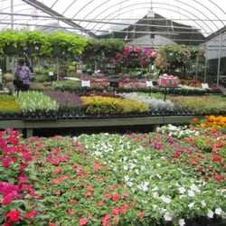 Photo Of Pike Nurseries Marietta Ga United States