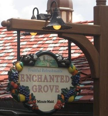Enchanted Grove: 4720 Caribbean Way, Lake Buena Vista, FL