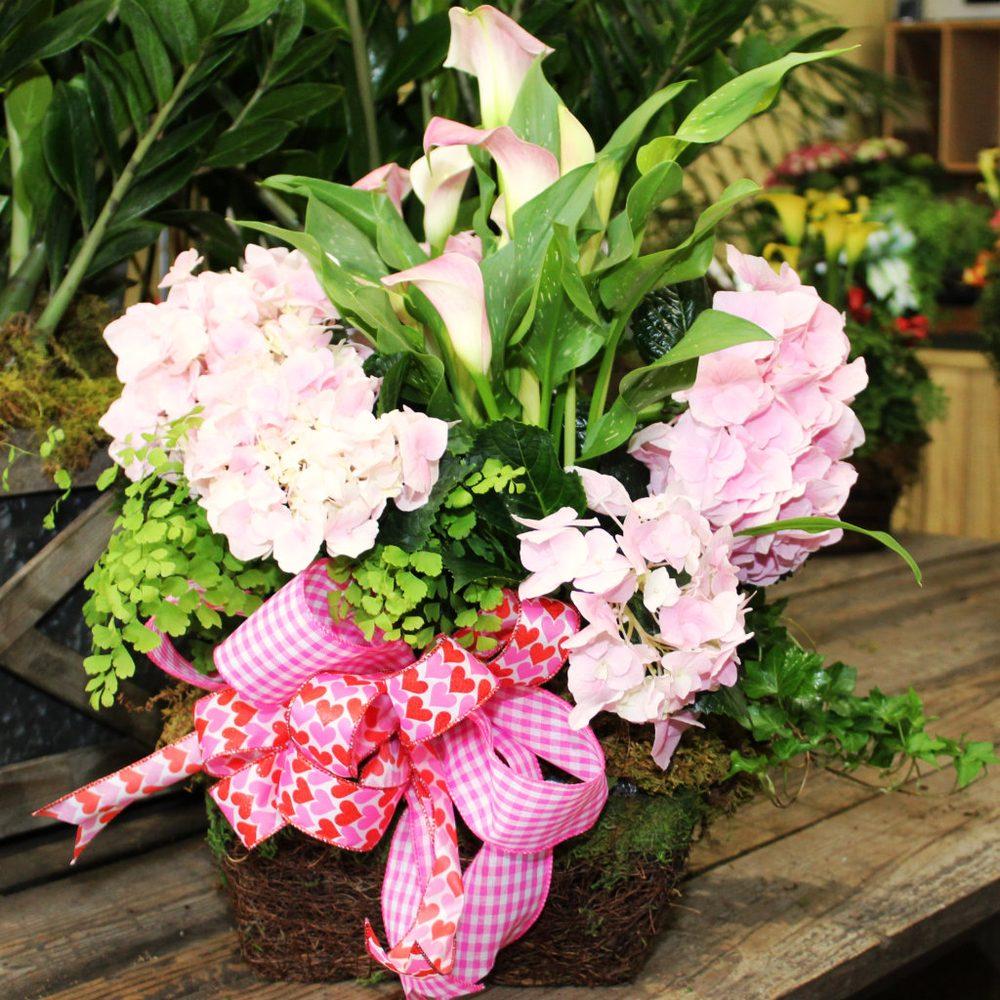 Anita's Garden Shop & Design
