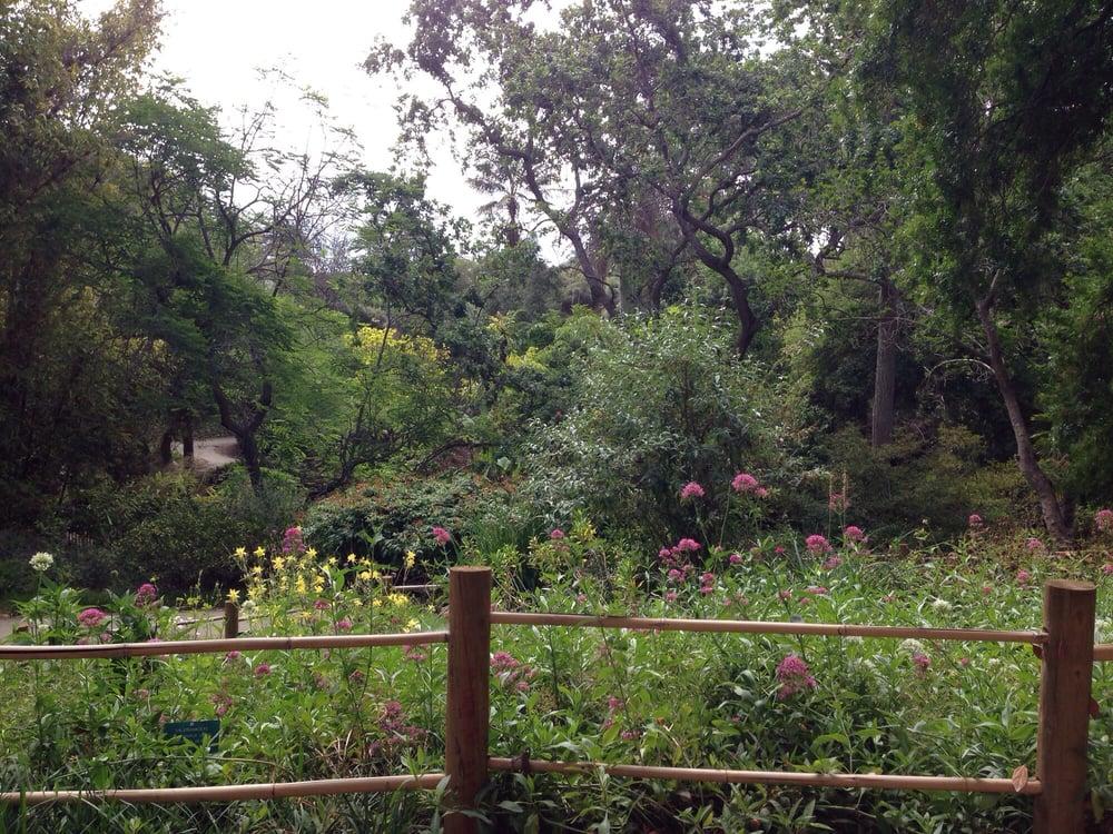 Attirant Photos For Mildred E Mathias Botanical Garden   Yelp