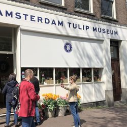 Amsterdam Tulip Museum - (New) 61 Photos & 25 Reviews - Museums