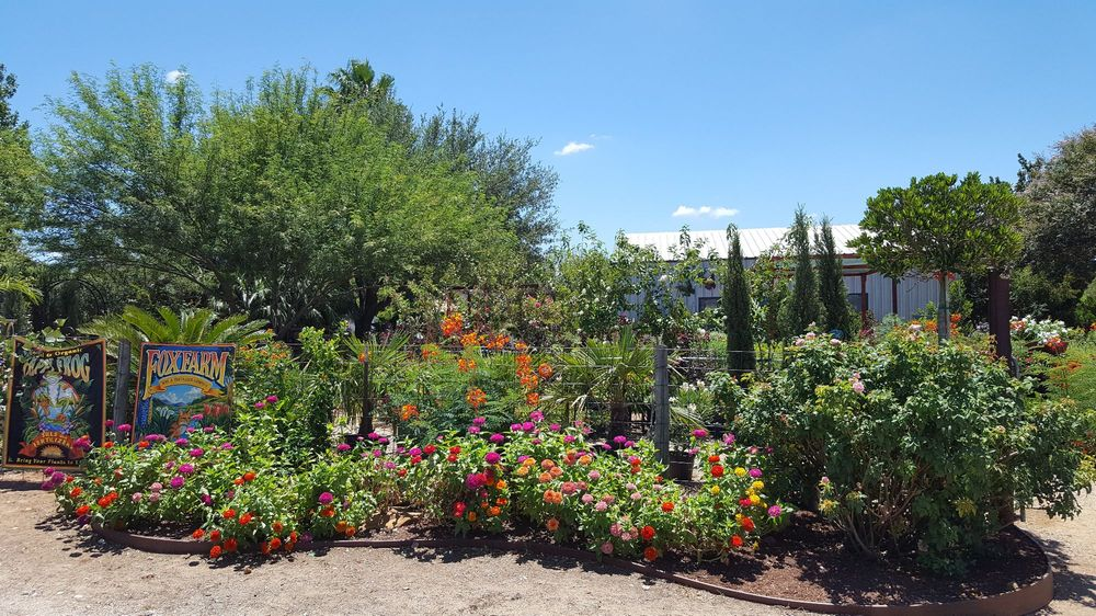Bloomers Garden Center: 507 N Hwy 95, Elgin, TX