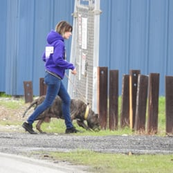 cb952bc6823 Villalobos Rescue Center - 74 Photos   48 Reviews - Animal Shelters ...