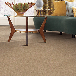 Photo of Floors for Less - Charlotte, NC, United States. New Carpet in