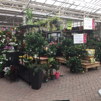 Photo Of Hicks Nurseries Westbury Ny United States