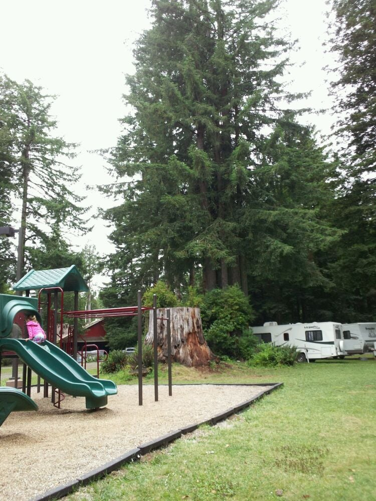 Photos For The Redwoods Rv Resort Yelp