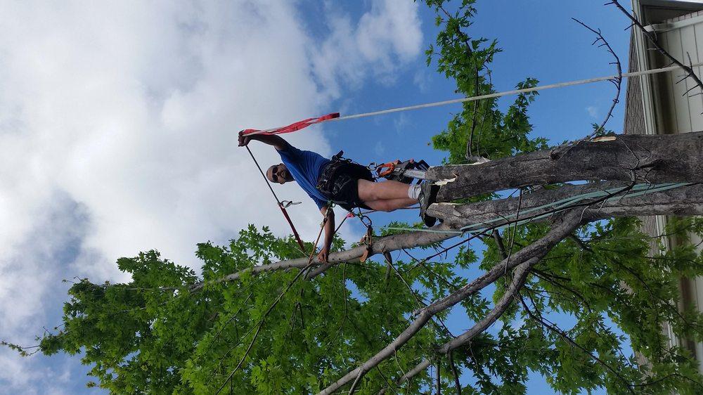 Callahan Tree Care: Claremore, OK