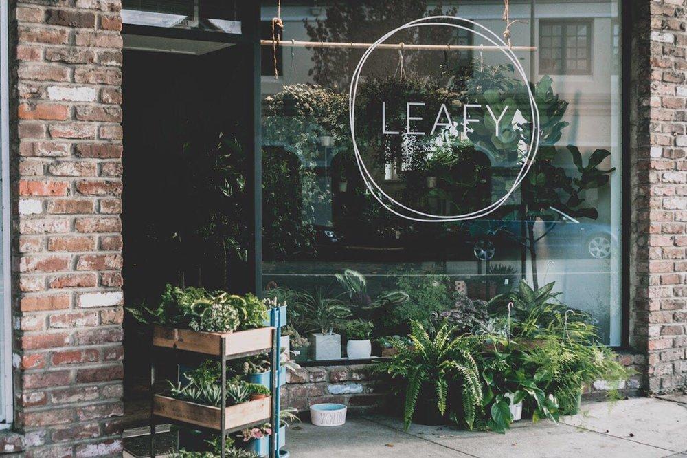 Leafy: 482 Hamilton Ave, Palo Alto, CA