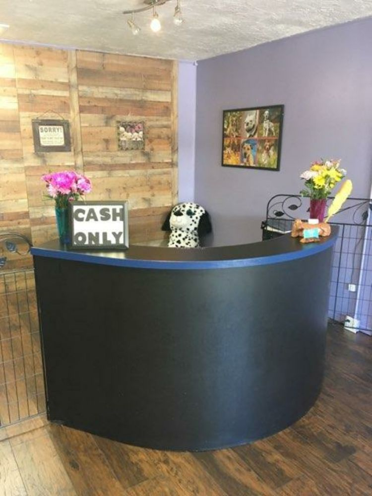 Bell's Pet Spa And Lodge: 3921 US Hwy 76, Young Harris, GA