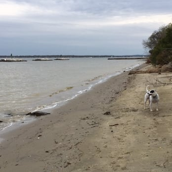 Beverly Triton Beach Park Dog Friendly