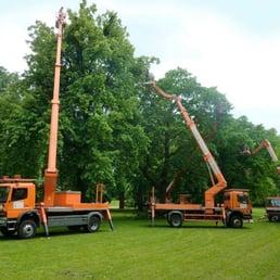 Baumpflege  Baumpflege Fleischer - Tree Services - Mügelner Str. 20, Dresden ...