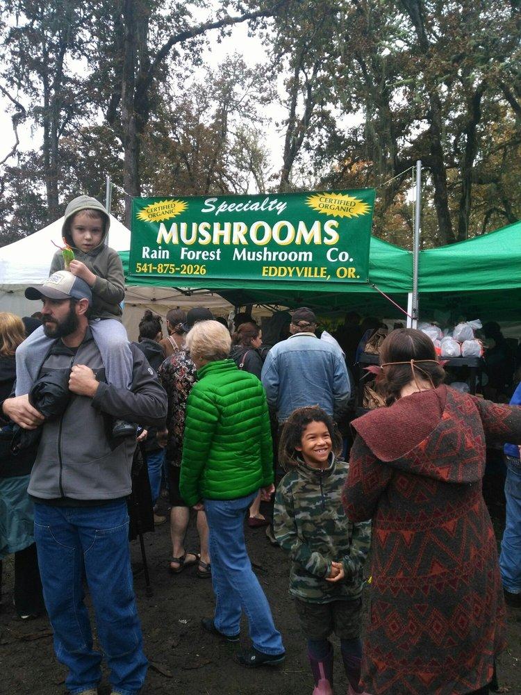 Mount Pisgah Mushroom Festival