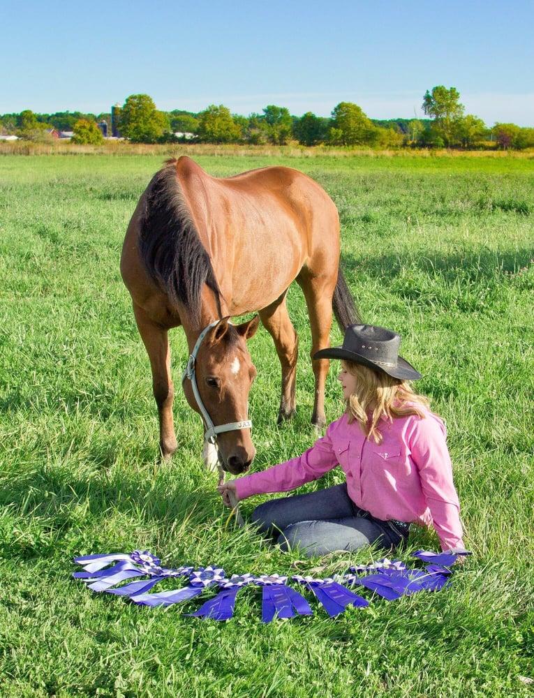 San Lue Arabians horse boarding: 11450 Maxwell Rd, Carleton, MI