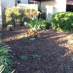 Photo Of Big Alu0027s Handyman And Gardening Services   San Jose, CA, United  States