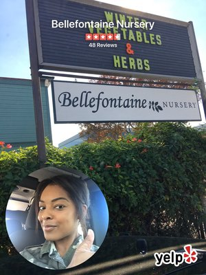 Bellefontaine Nursery 838 S Fair Oaks Ave Pasadena Ca Nurseries Mapquest