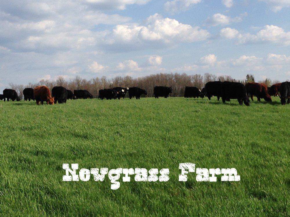 New Grass Farm: 4009 Henry St, Wausau, WI