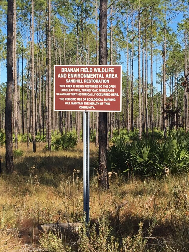 Branan Field Wildlife & Environmental Area: 11900 Branan Field Rd, Jacksonville, FL