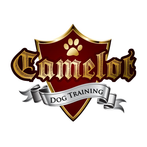 Camelot Dog Training: New Haven, CT